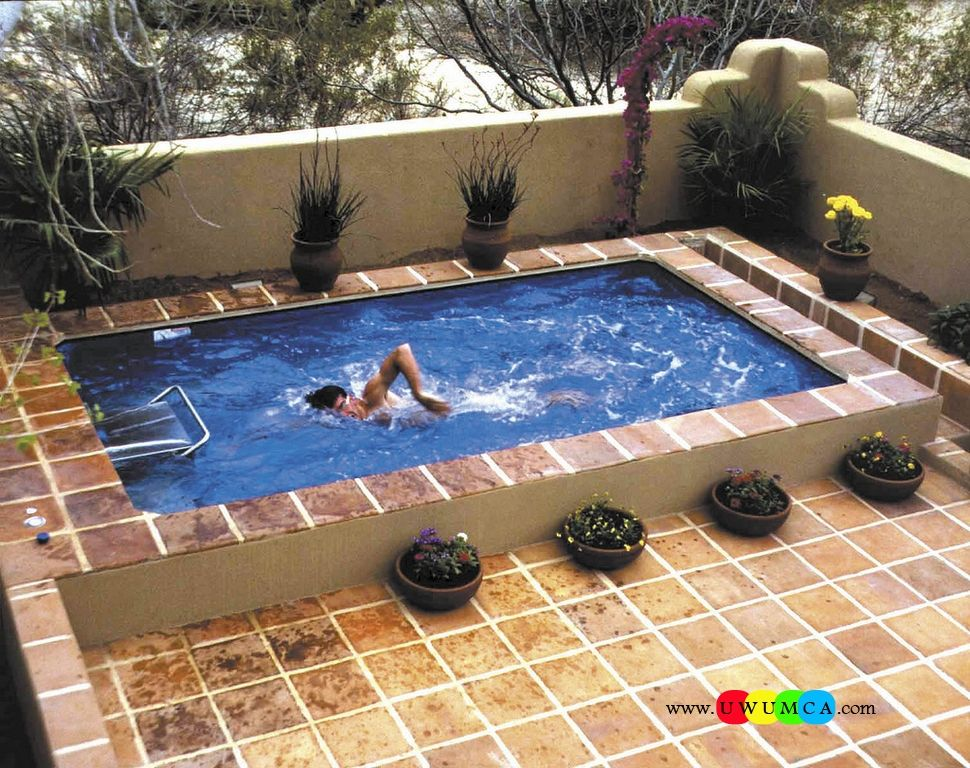 Swimming pool architecture beautiful with plants around it for Concrete pool designs