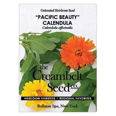 Calendula germinates in soil temps from 50 to 85 F. Sow 1/4 inch deep and 3 inches apart with 24 inches between plants. Thin seedlings to 8-10 inches. Calendula reaches maturity in 60 days.
