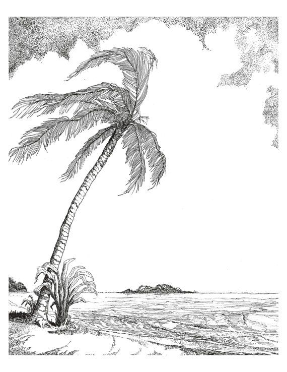 Breezy Palm Tree 12x14 Black Ink Drawing On White By Rayruebyarts 75 00 Palm Tree Drawing Tree Drawing Surf Art Print