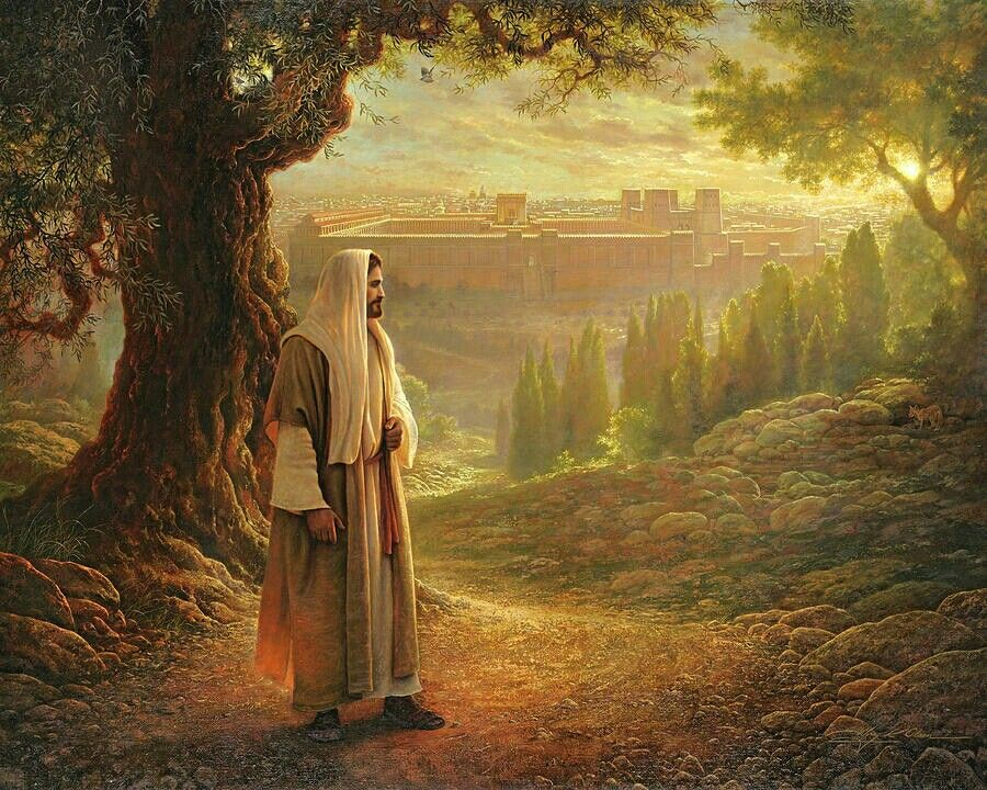 Jesus praying over Jerusalem. - Artist - Greg Olsen? | Jesus pictures, Greg  olsen art, Lds artwork