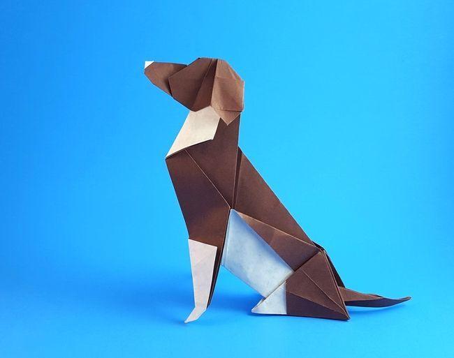 Origami Beagle By Seth M Friedman Folded By Gilad Aharoni Beagles