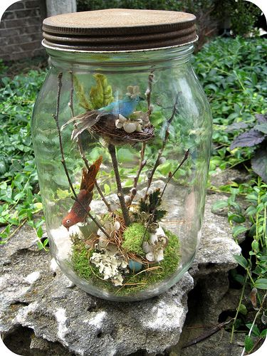 Bird's Nest Jar Assemblage | Katie Runnels 2010 | By: Katie Runnels | Flickr - Photo Sharing!