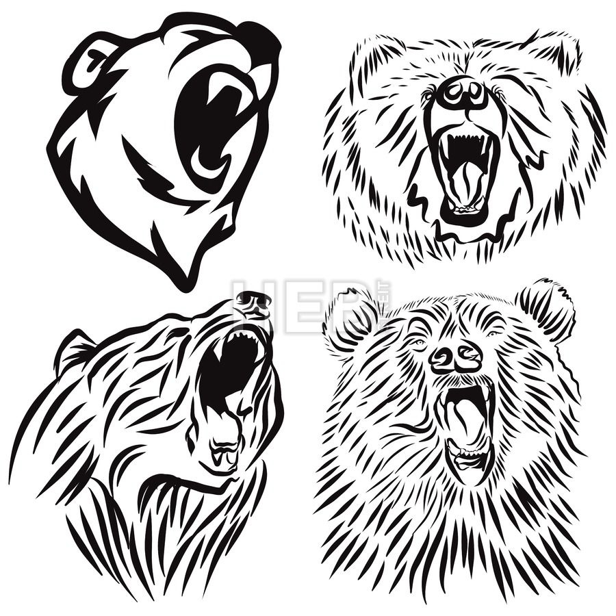 Bear roaring. Four wild grizzly heads