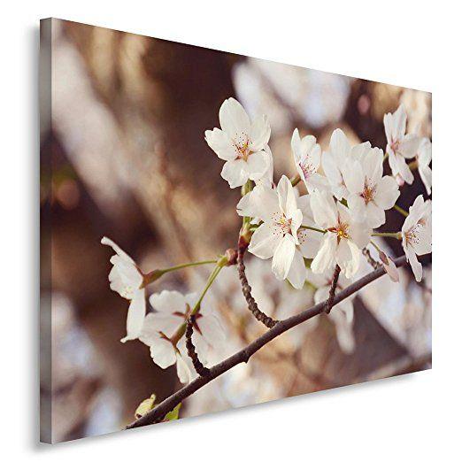 Feeby, Wandbild - - Bilder Blumen bilder pflanzen garten bilder