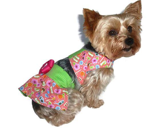Dog Sun Suit Sewing Pattern 1671 Dog Swimsuits Dog Bathing