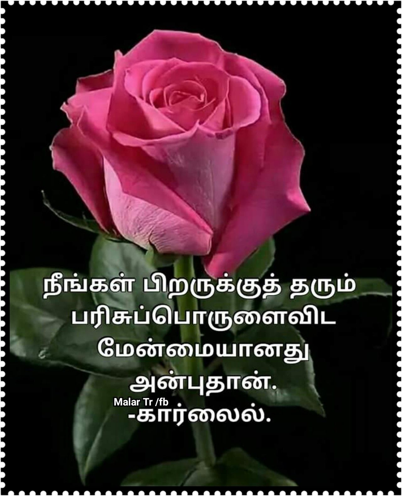 Pin By Santhi Govindasamy On Quotes In Tamil Good Morning Quotes Sweet Words Morning Quotes