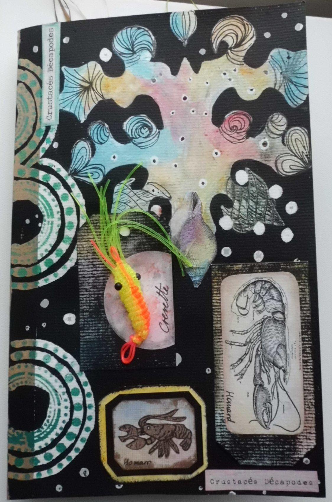 Cabinets de curiosités: les crustacés décapodes