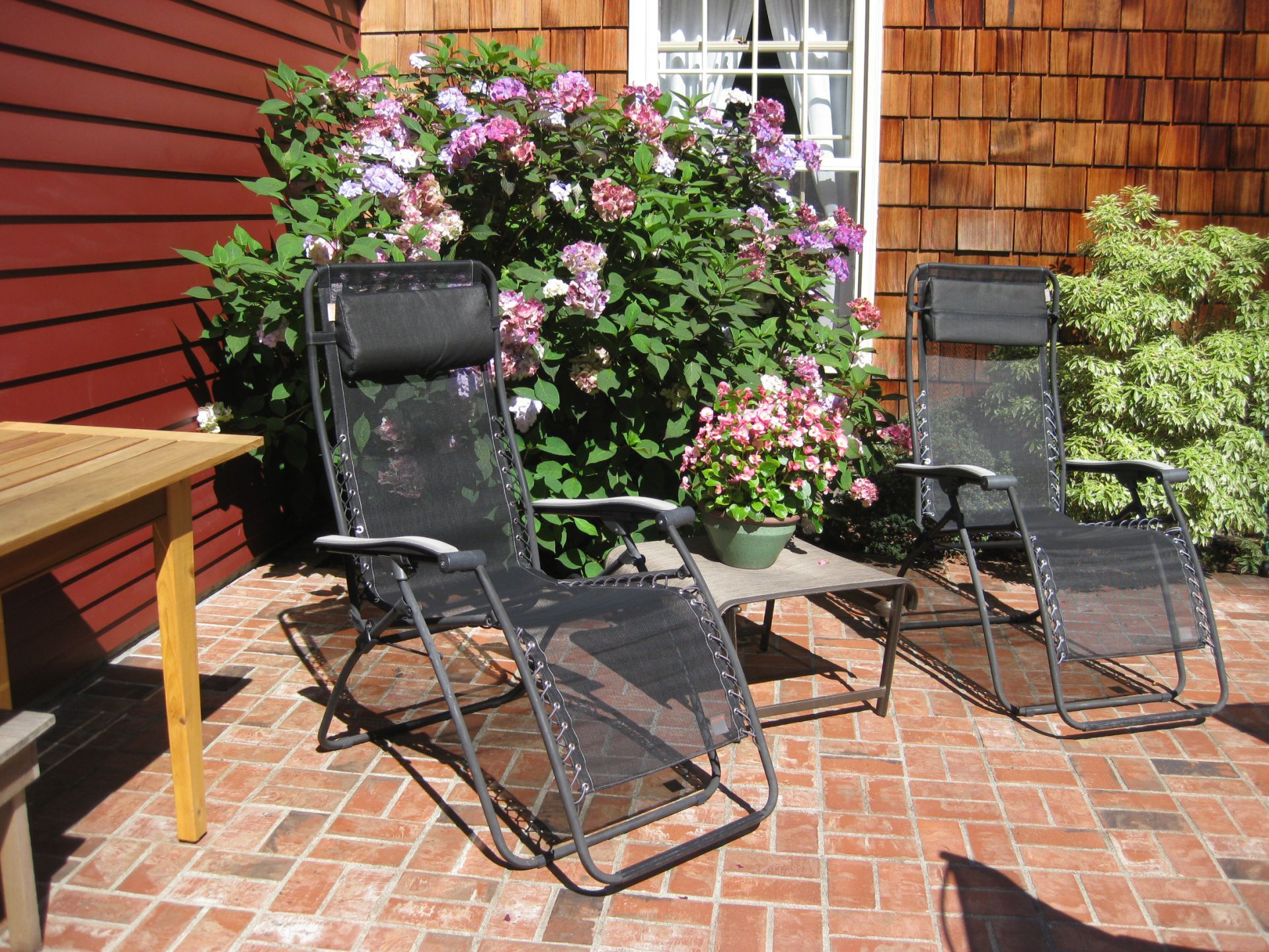 Patio Looks To Open Backyard With Beautiful Landscaping, Apple Tree,
