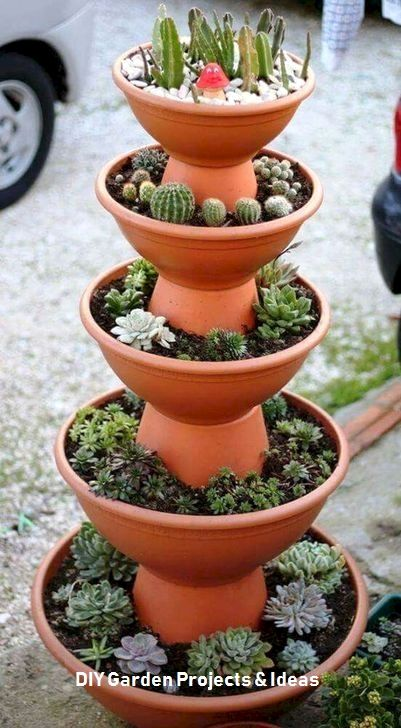 20+ Creative DIY Succulent Ideas For Your Garden #patiodepapas