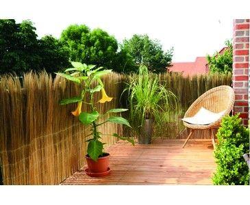 Bambus Discount balkonverkleidung aus farnwedeln hier bestellen bei ast