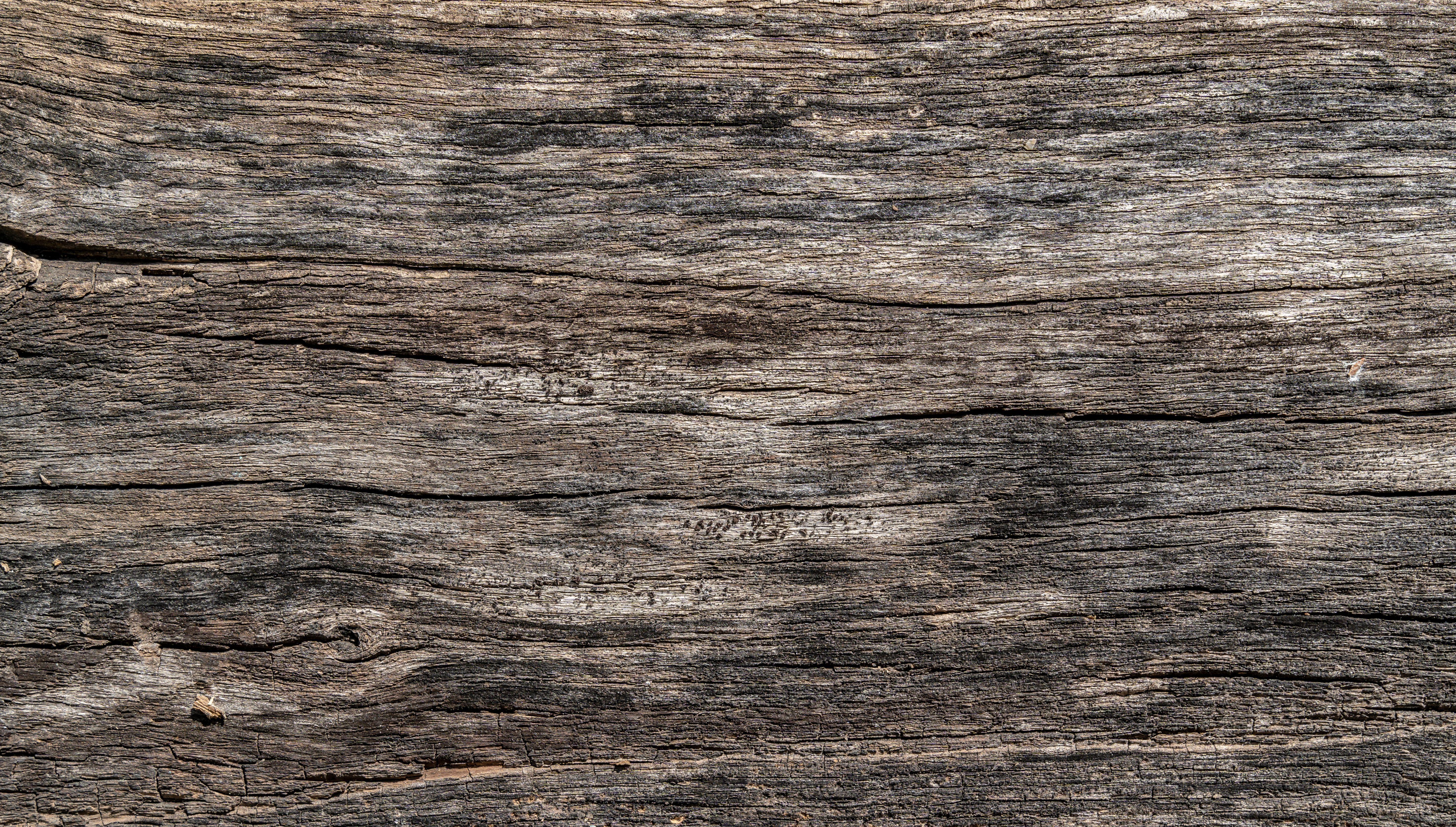 Wooden Texture Background Woodtexturebackground Wooden Texture Background Old Wood Texture With Scratche Wooden Textures Old Wood Texture Textured Background