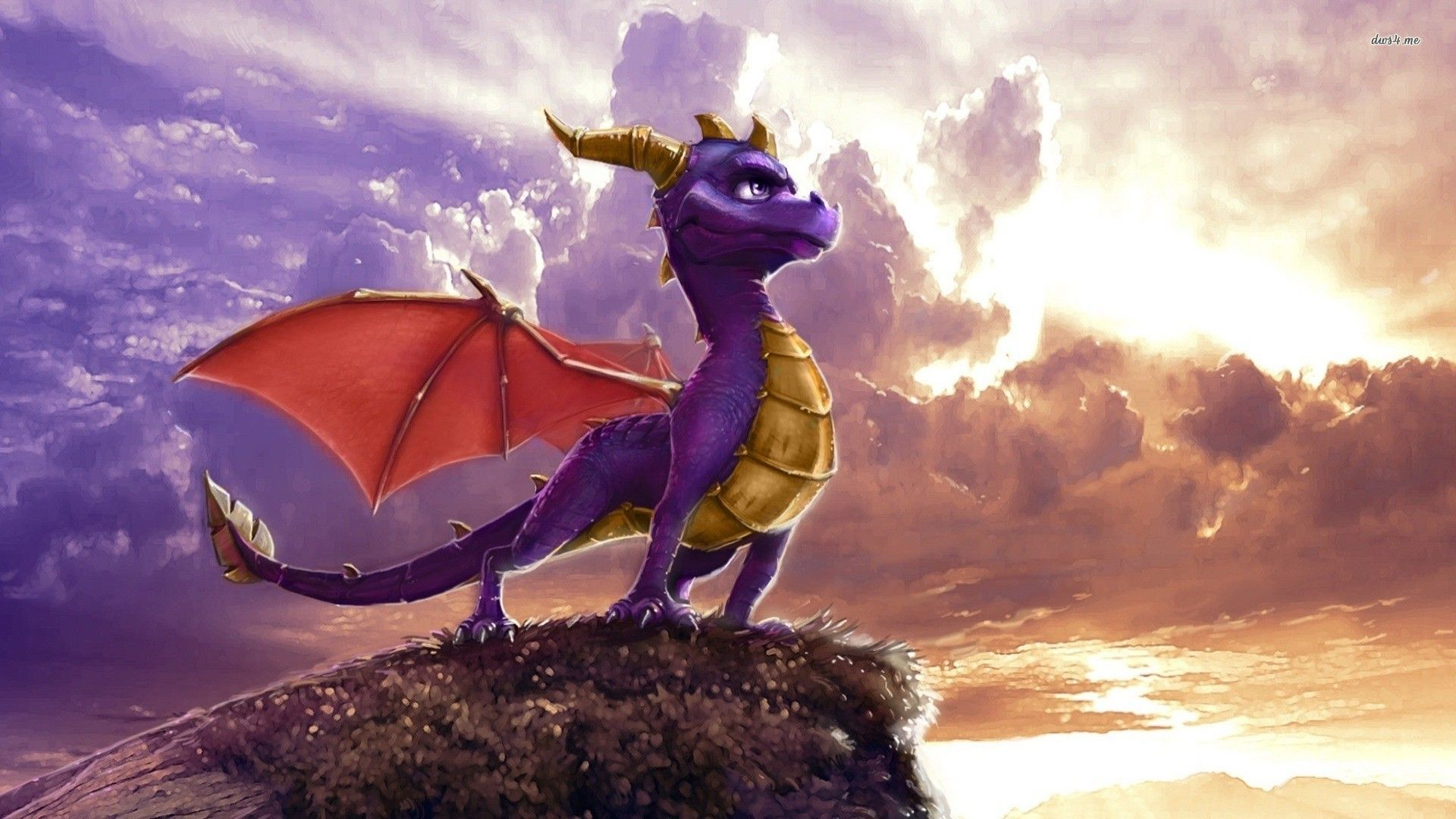 Images For > Spyro The Dragon