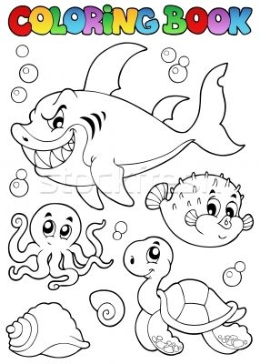 Coloriage Sur Le Theme De La Mer Coloriage Requin Coloriage
