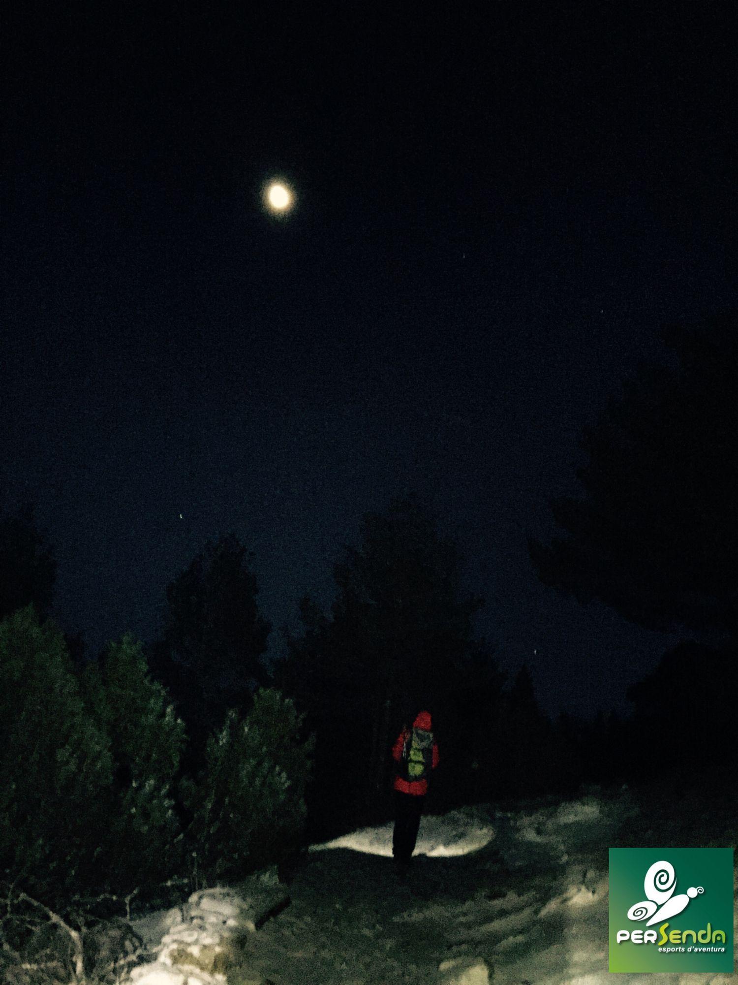 Camino de la luna.