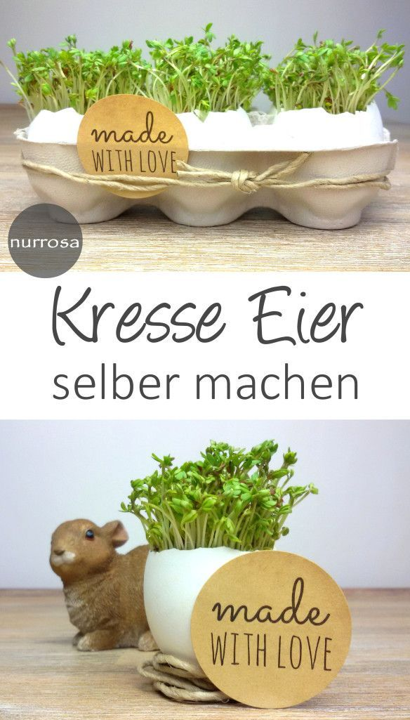 Photo of Simply make cress eggs for Easter