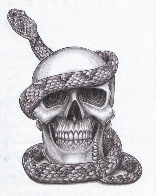 тот картинки змей карандашом в черепе разукрасить стиле лиги