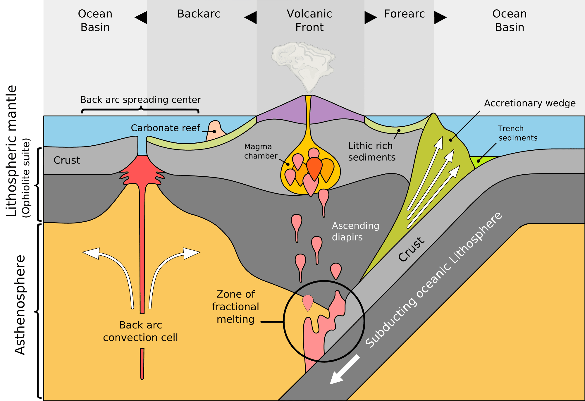 Subduction The Sinking Of Tectonic Plates Earth Science Lessons Plate Tectonics Earth Science [ 1371 x 2000 Pixel ]