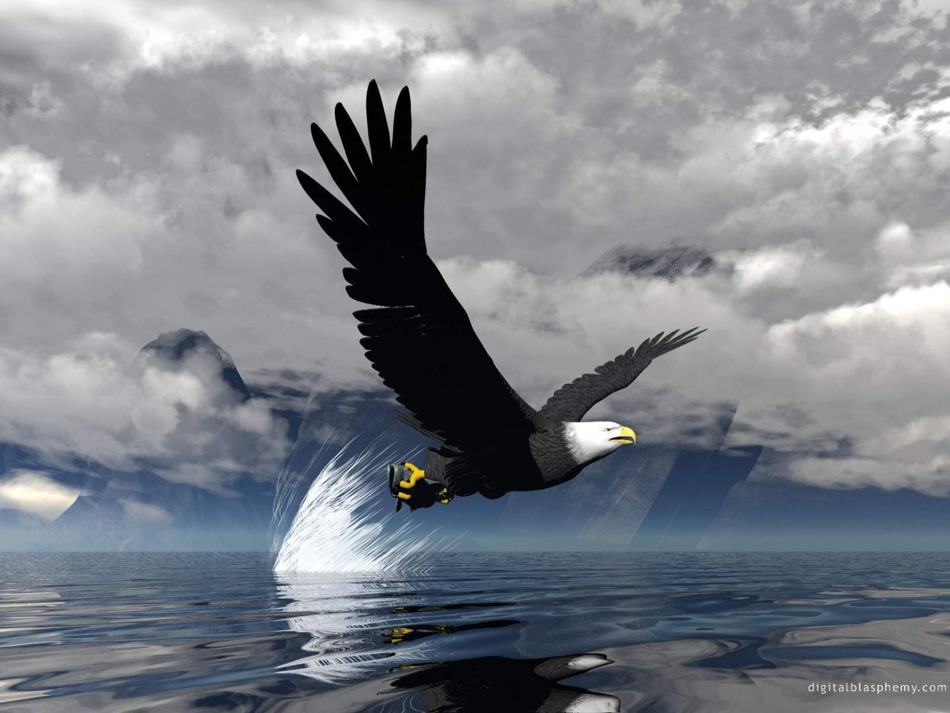 Animal 3D Eagle Flying Water Wallpapers HD Picture Free