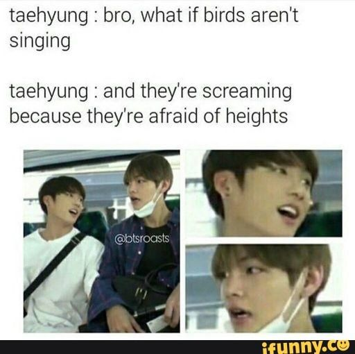 Taehyung : bro, what if birds aren't singing taehyung : and they're screaming because they're afraid of heights - )