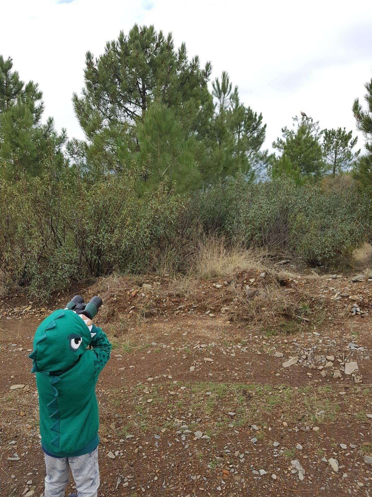 Observación De Aves Para Los Más Pequeños Observacion De Aves Senderismo Rutas