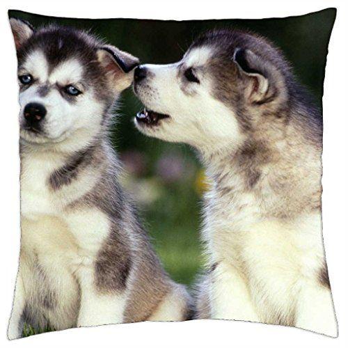 Huskies de Sibérie-Housse étui couverture Taie d'oreill... https://www.amazon.fr/dp/B014PLCMQO/ref=cm_sw_r_pi_dp_OP9zxbBEDMHKF