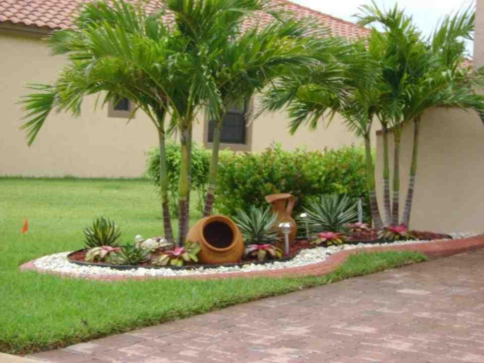 تنفيد جميع اعمال الشلالات الصناعية وبرك الحدائق ونافوراة المياة والستائر المائية للحوائط والارضيات والا Jardins Pequenos Jardim Decorativo Ideias De Jardinagem