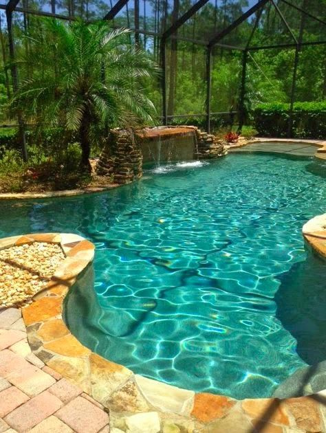 Organic shaped enclosed pool with tropical plants pools for Pool design miami