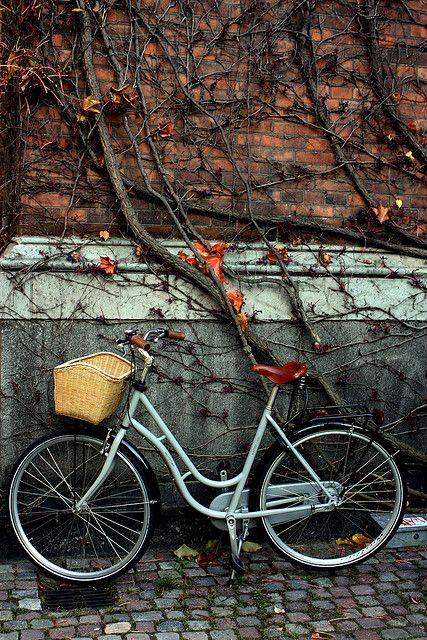 Byke Sepeda Musim Gugur Dekorasi
