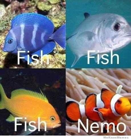 Fish vs Nemo