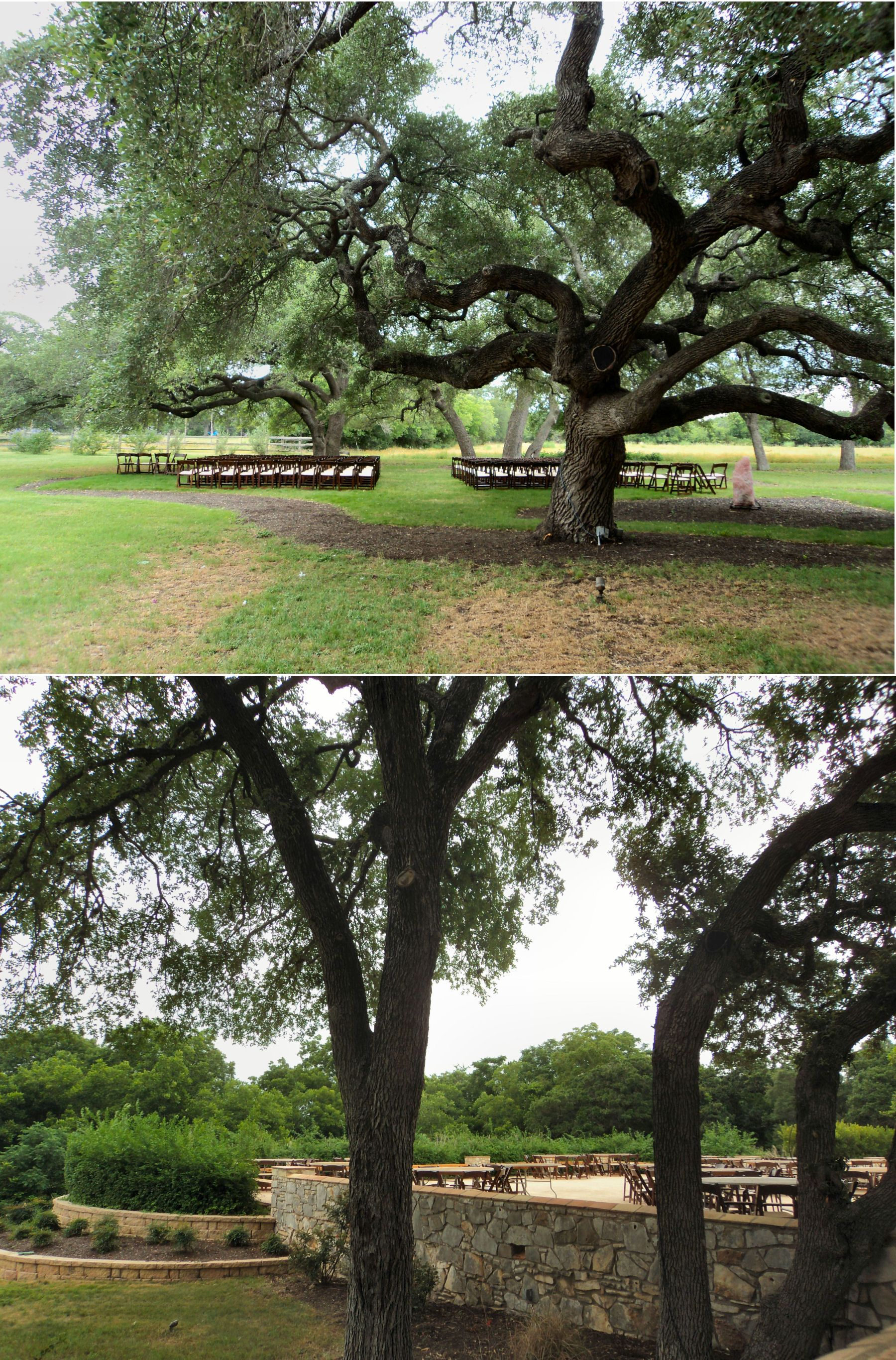 The outdoor wedding ceremony and reception area at The ...