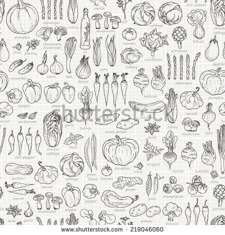vegetable illustration - Google 검색