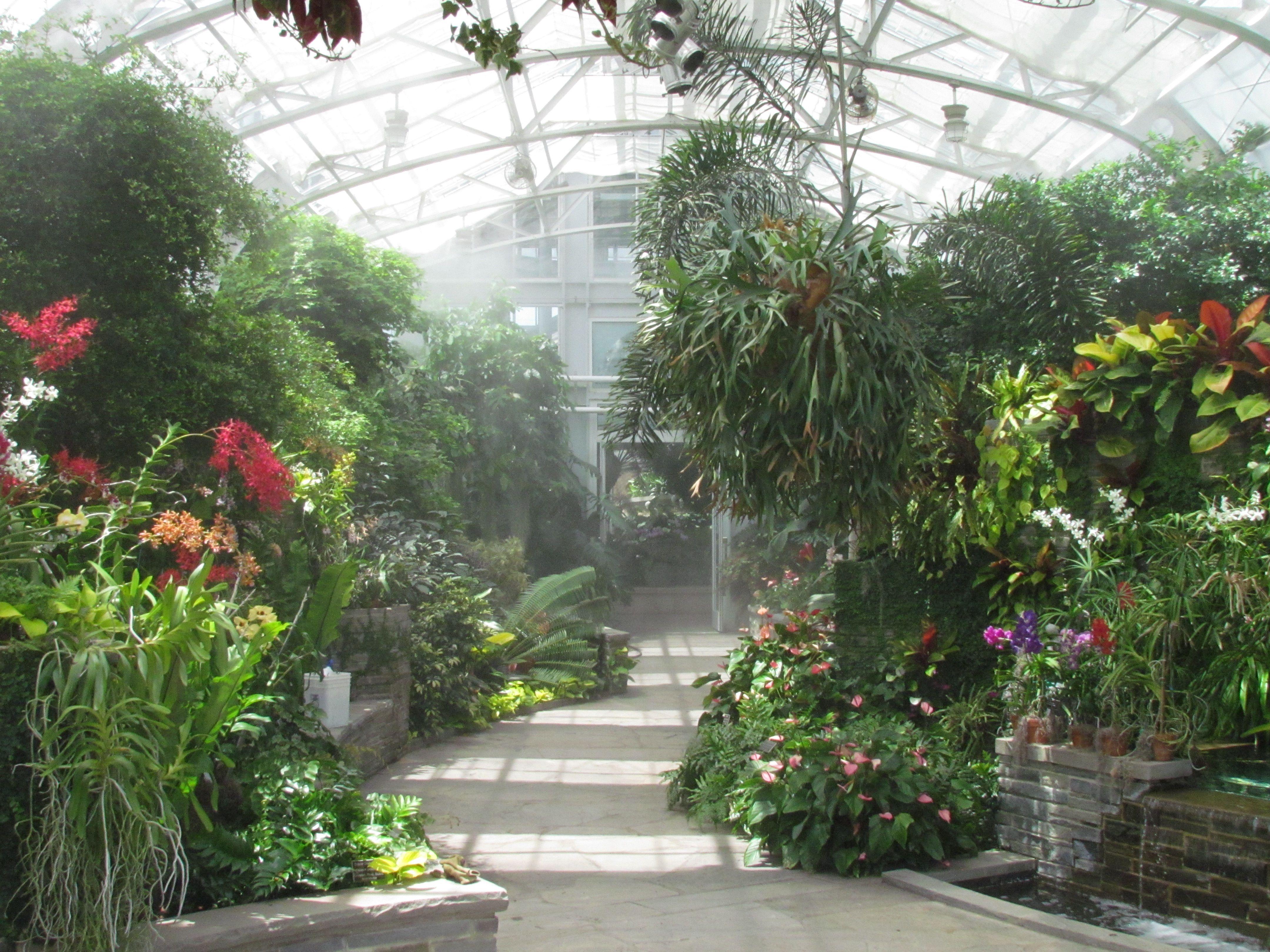 Inside The Conservatory At The Lewis Ginter Botanical Garden Botanischer Garten Garten