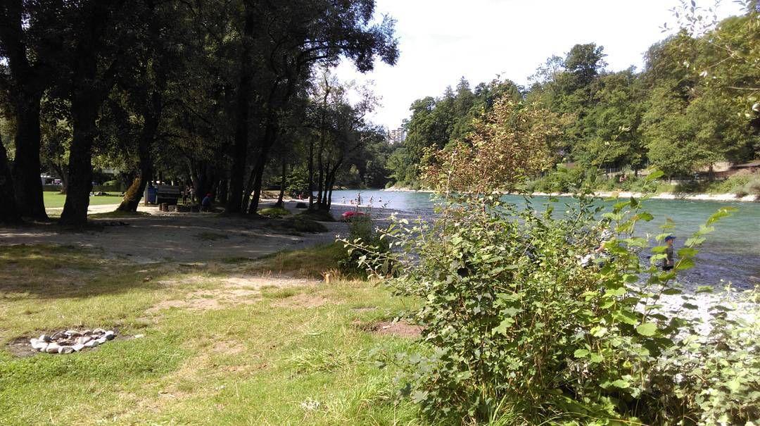 #aare #fluss #river #bern #eichholz #camping #city #schweiz #switzerland #swiss #suisse #landscape #natur #bärn
