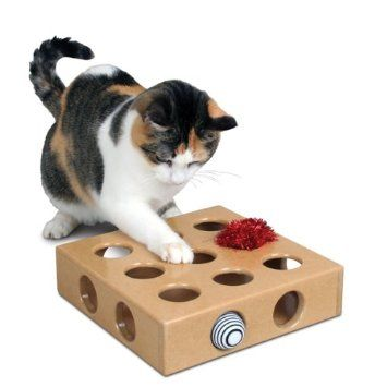 Smart Cat Peek And Play Toy Box Amazon Co Uk Pet Supplies Pet Toys Best Interactive Cat Toys Interactive Cat Toys