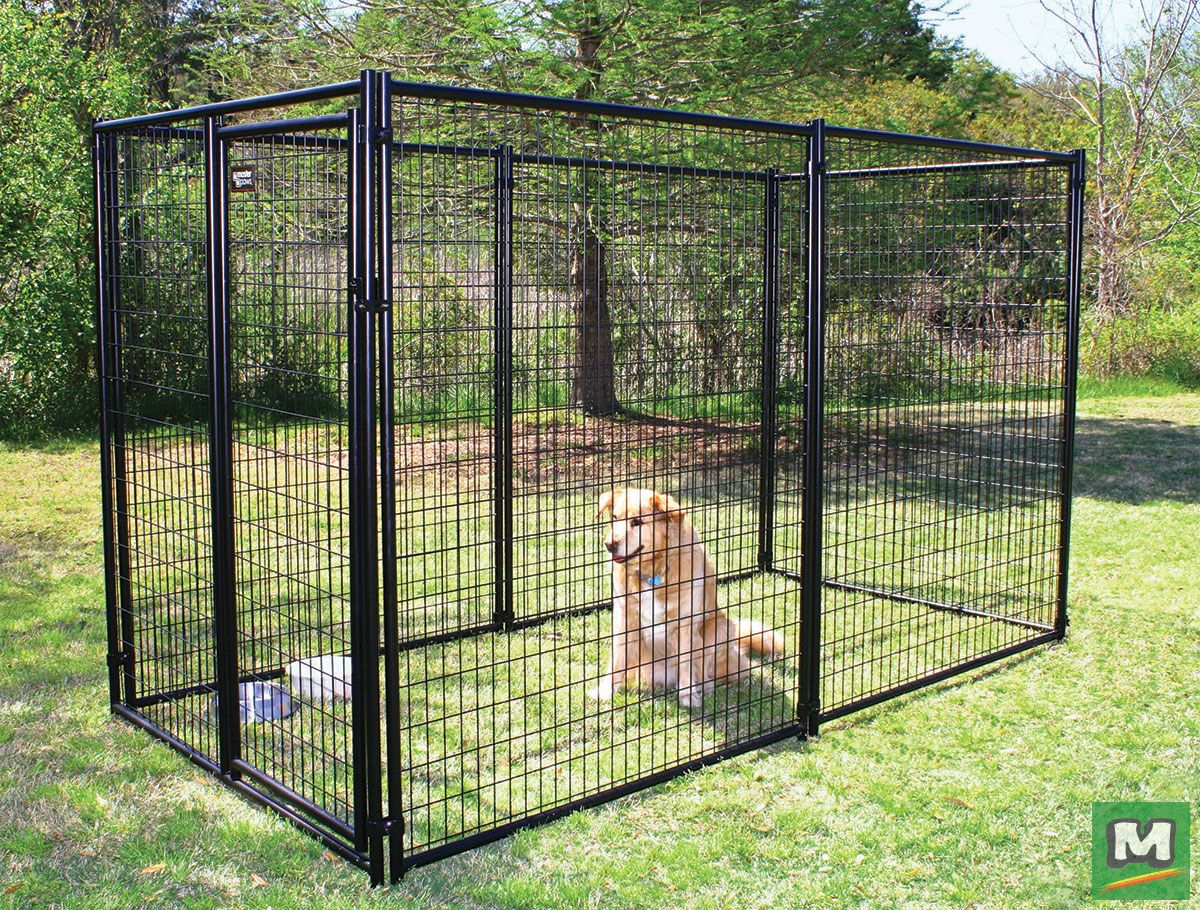 Keep Your Pet Safe And Secure With This 5 X 6 X 10 Powder