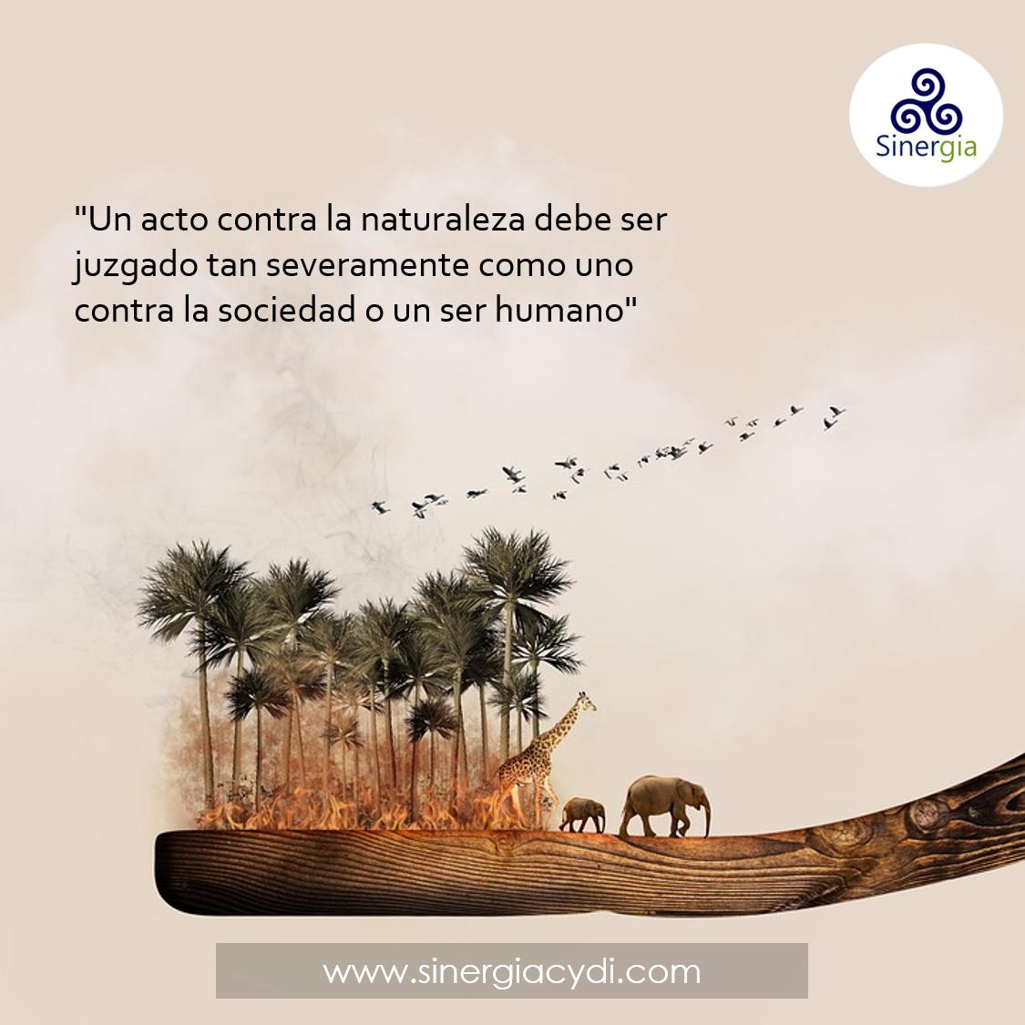 Respeto a la naturaleza y el entorno