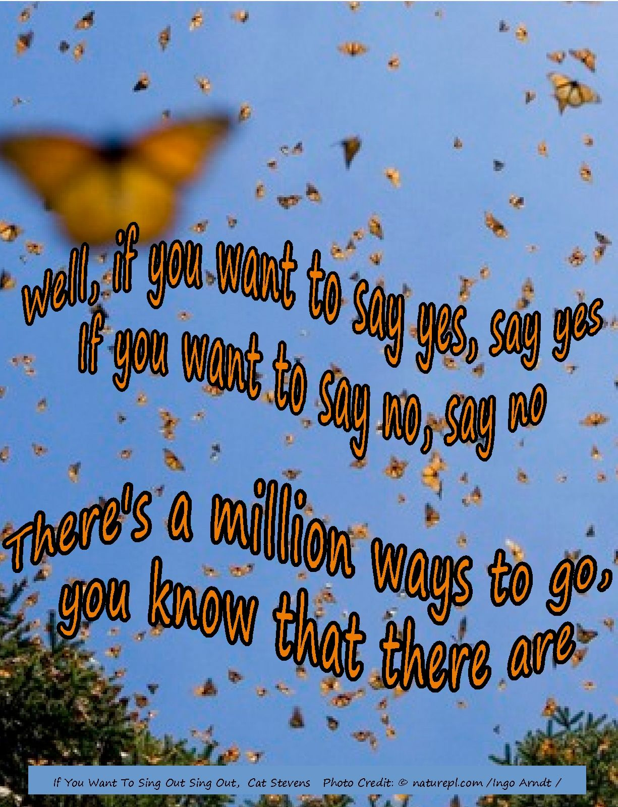 """If you want to say yes, say yes....there's a million ways to go, you know that there are""....Cat Stevens"