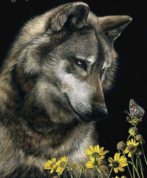 http://animalsofthisworld.tumblr.com/