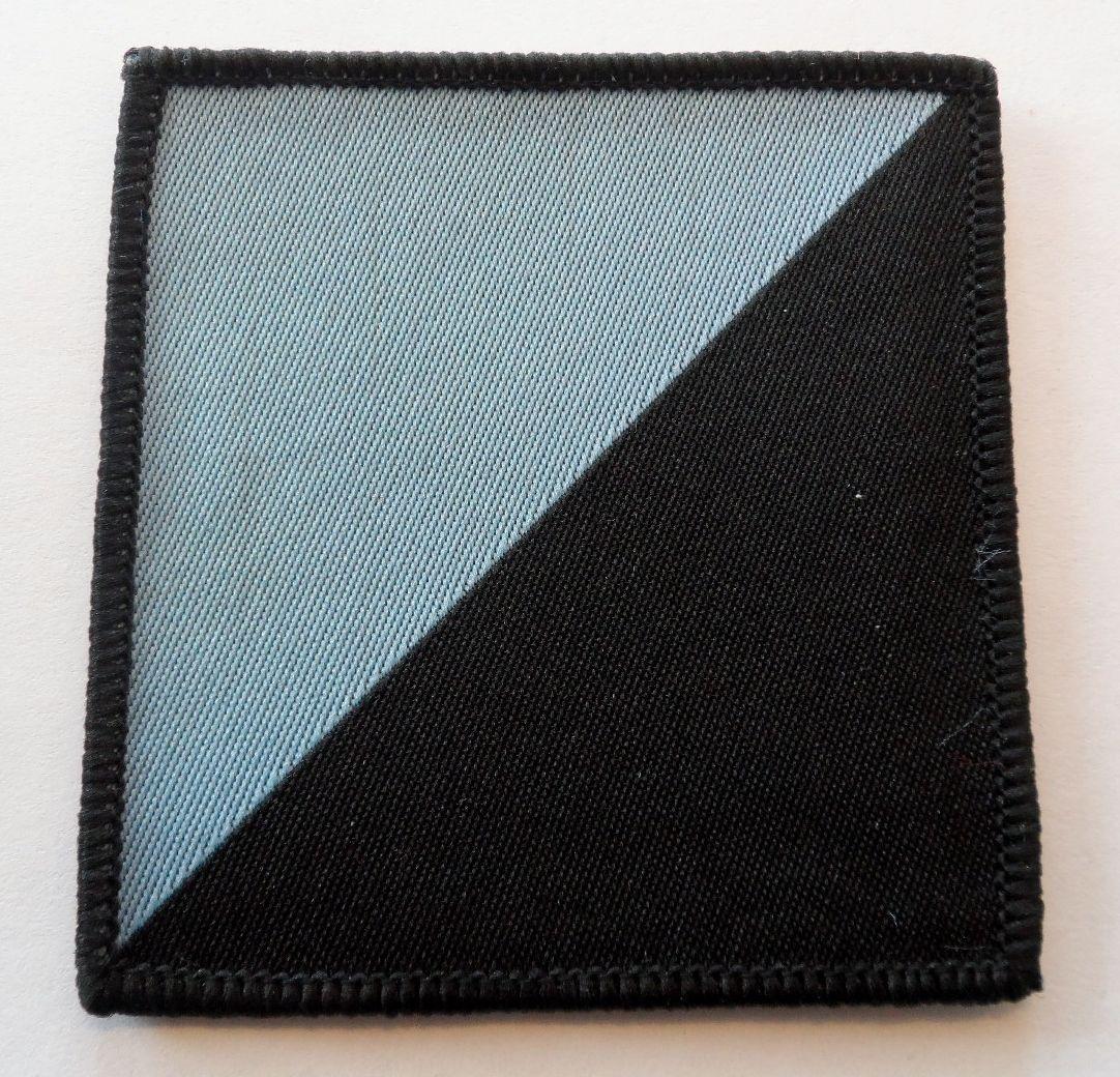 7 Battalion REME 132 AV Support RLC Squadron Flash Army Badge Tactical