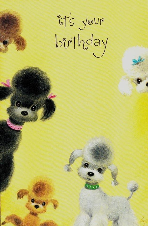 Pin by cheryl gregoire on oodles of poodles pinterest poodle vintage greeting card birthday card with poodles bookmarktalkfo Gallery