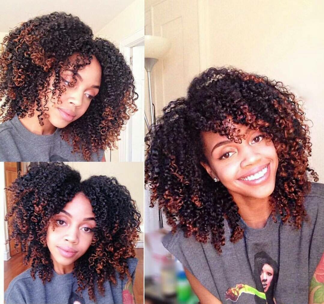 Natural Hair Dyed Natural Hair Natural Hair Styles Curly Hair Styles Naturally