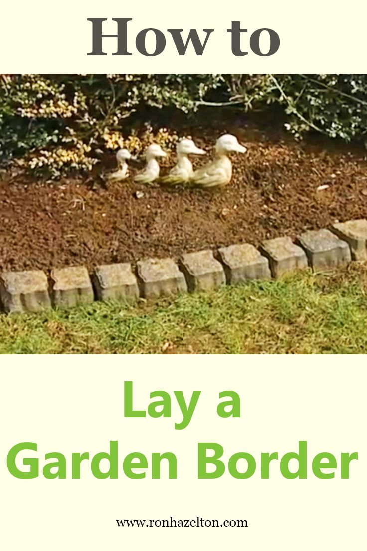 Lay edging blocks along flower beds to frame your garden with a ...