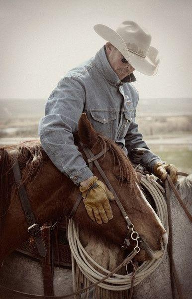 Cowboy Love This Image Horses Cowboy Horse Horse Love