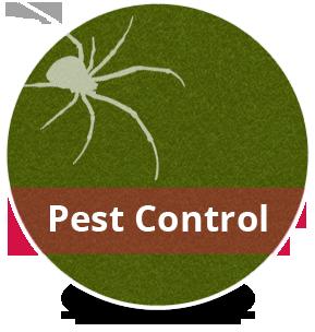 Image result for GREEN LOGO PEST CONTROL Green logo