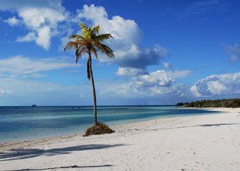 Beach On Coco Cay