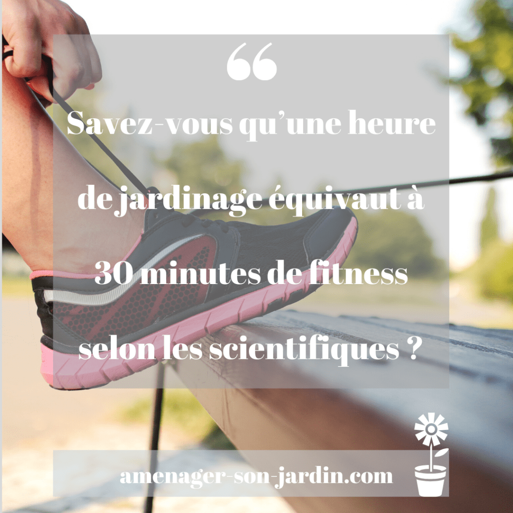 Epingle Sur Univers Du Jardin Jardinage