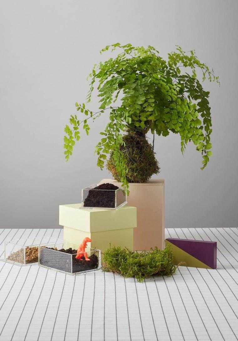 art floral japonais kokedama idees de pots de plante naturels