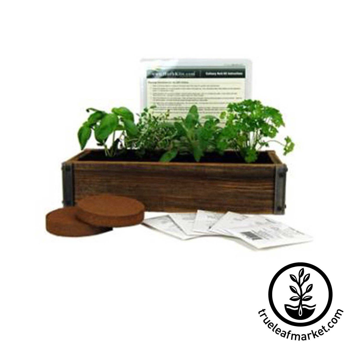 Complete Kit To Grow Your Own Culinary Herb Garden On Kitchen Countertop With This