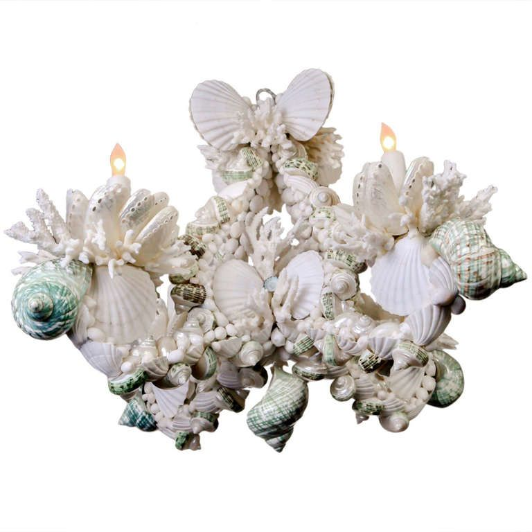 Shell Chandelier   From a unique collection of antique and modern chandeliers and pendants  at https://www.1stdibs.com/furniture/lighting/chandeliers-pendant-lights/
