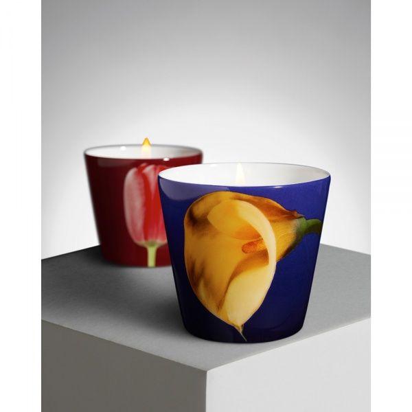 R. Mapplethorpe Coffret de deux bougies parfumées Tulipe rouge et Arum jaune - Ligne Blanche Paris